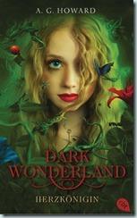 darkwonderland1